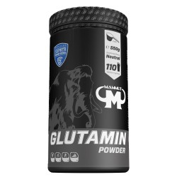 Glutamin Powder